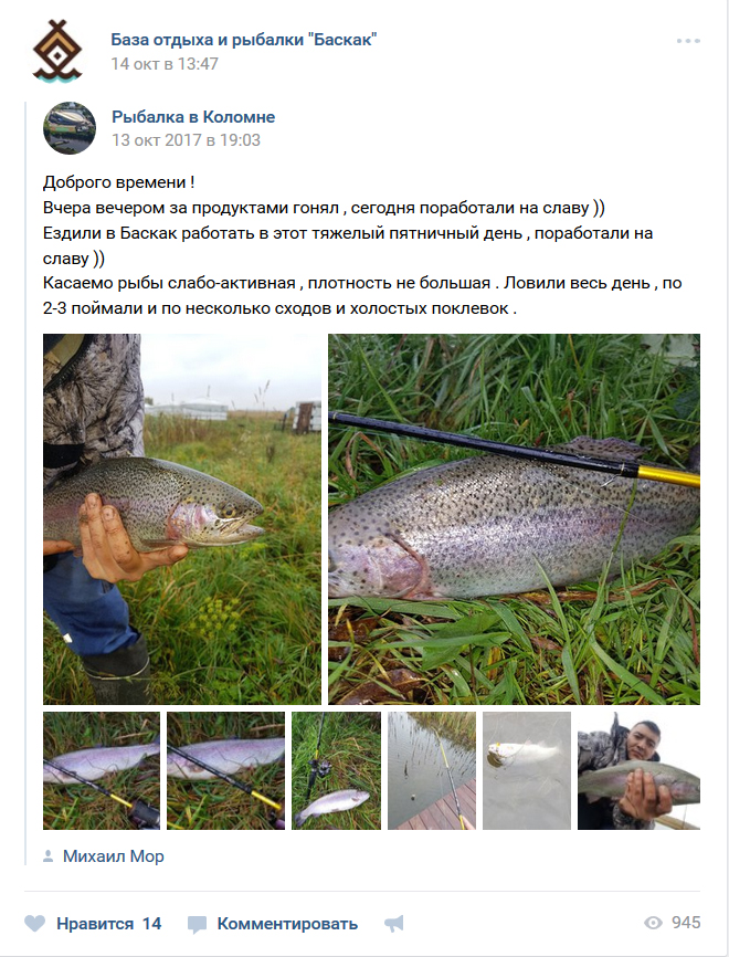 Платная рыбалка в баскаке